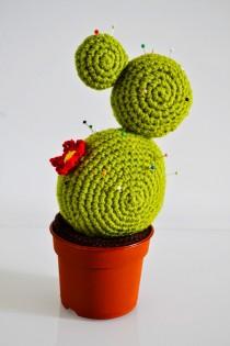 cactus met spelden2