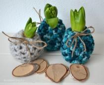 hyacint_jasje