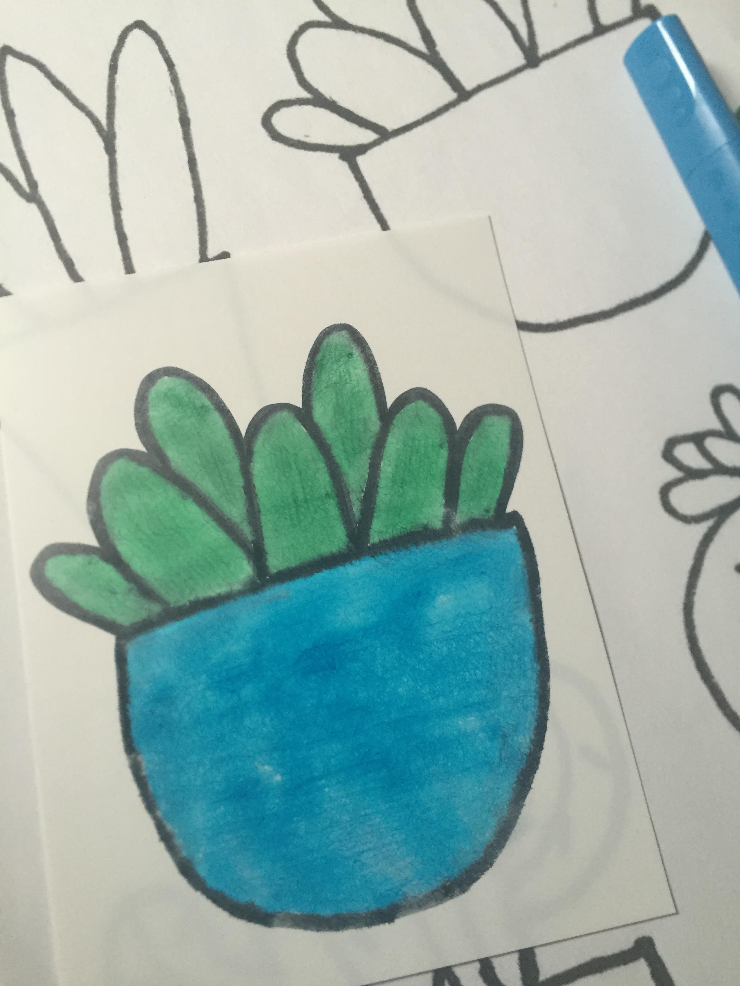 inkleuren_cactus4