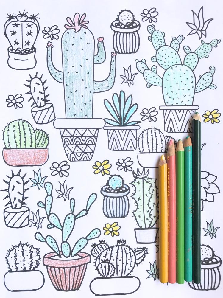 gratis printable kleurplaat cactus freubelweb freubelweb