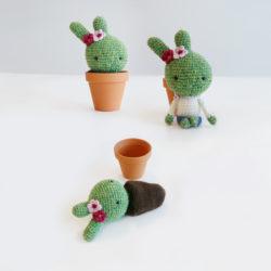 cactus konijntje