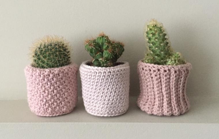 cactuspotje