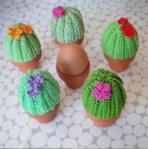 eiermutsje cactus