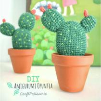 haakpatroon cactus