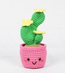 cactus haakpatroon