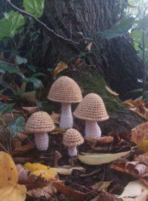 paddenstoelen haken